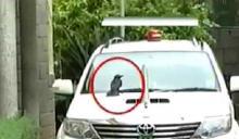Karnataka CM changes car after bird sits on it