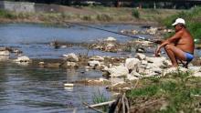 Fishing hoping to land Olympic status