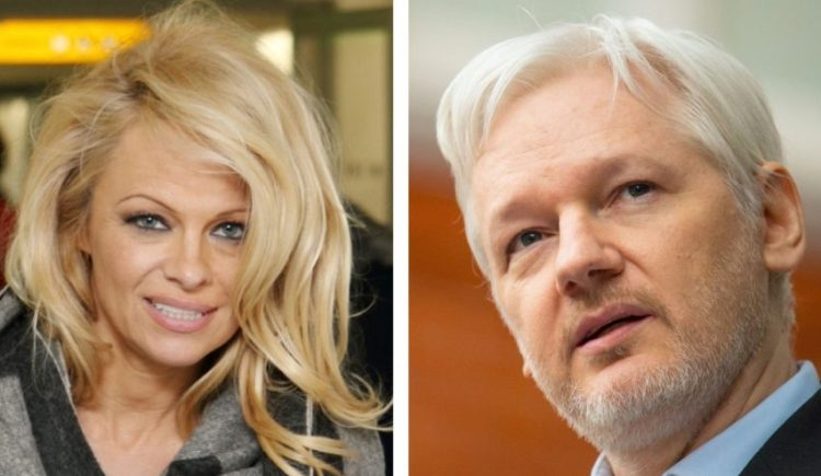 Julian Assange says Pamela Anderson is attractive, savvy
