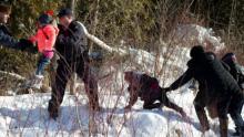 8 people flee US border patrol to seek asylum in Canada