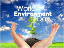 World Environment Day: What do we know and what responsibility we have