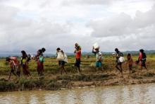 Over 2,600 houses burnt in Rohingya-majority areas of Myanmar