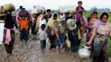 370,000 Rohingyas flee Myanmar, enter Bangladesh