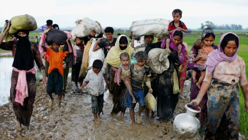 Commonwealth commends Bangladesh response to Rohingya refugees
