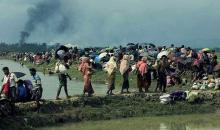 DPHE sets up 1,200 latrines, 1,200 tube wells for Rohingyas