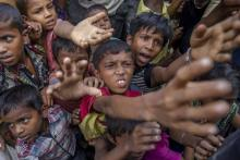 No 'ethnic cleansing,' genocide against Muslims: Myanmar