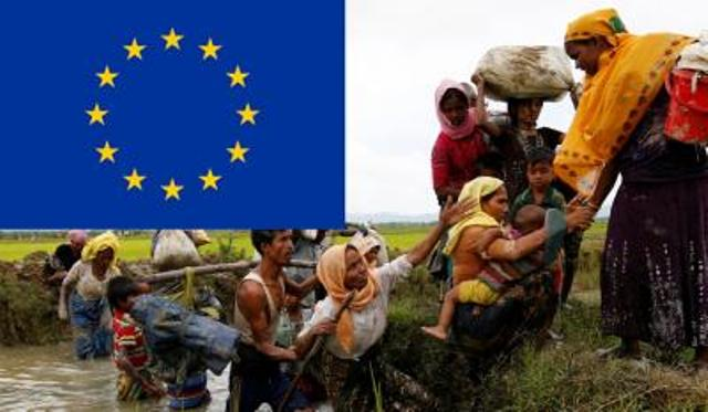 Rohingya crisis reflects vulnerability of human rights: EU