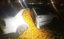Cops catch cars packed with 4,000 kilos of stolen oranges