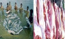 Bangladesh self-sufficient in fish, meat production: Minister