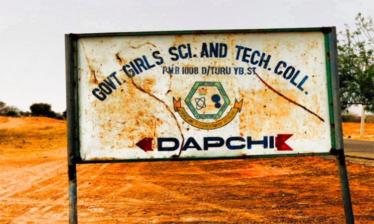 Kidnapped Nigerian schoolgirls freed