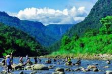 Domestic tourism sees fastest growth despite limitations