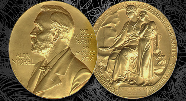 2018 Nobel Literature prize postponed over Academy sex scandal