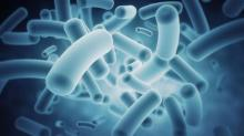 Gut bacteria may cause heart attack