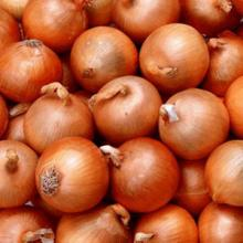 Over 10,000 tonnes onion imported in seven days