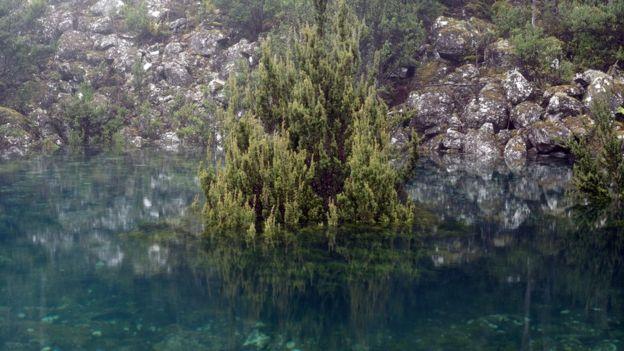Tasmanian disappearing lake re-emerges