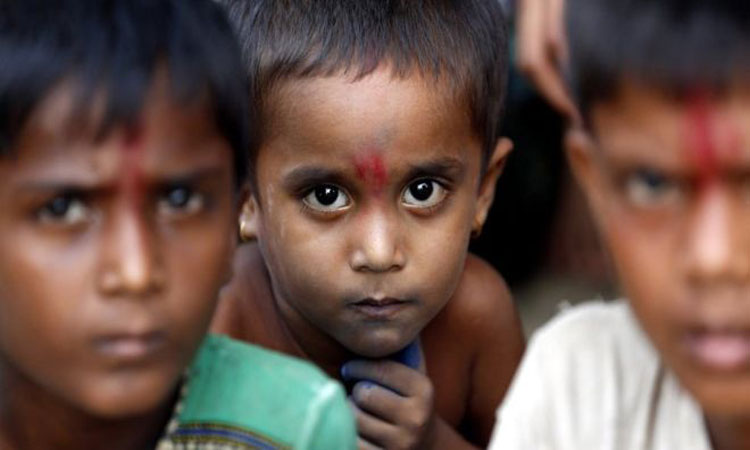 Rohingya 'militants' massacred Hindus: Amnesty