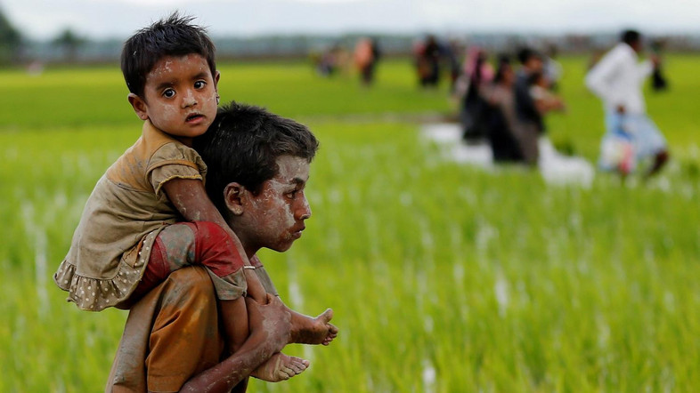 Verification helps solution for Rohingya: UN