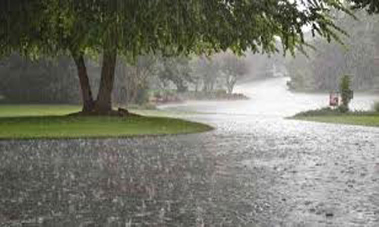Met office predicts light to moderate rain