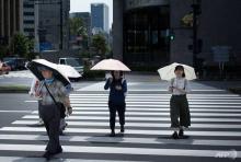 'Unprecedented' Japan heatwave kills 65 in one week