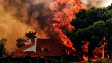 More than 20 killed in Greece wildfires
