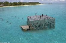 Maldives opens world's first intertidal art gallery