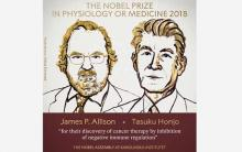 US, Japanese pair win Nobel Medicine Prize for cancer therapy
