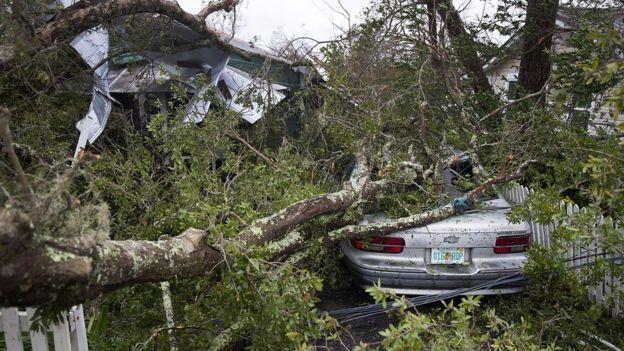 Hurricane Michael mauls US, 2 killed
