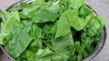 Eating spinach helps prevent vision loss
