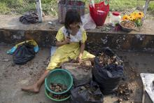 UN finds 486 million in Asia still hungry, progress stalled