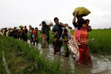Too soon to send Rohingya back: UN rights envoy