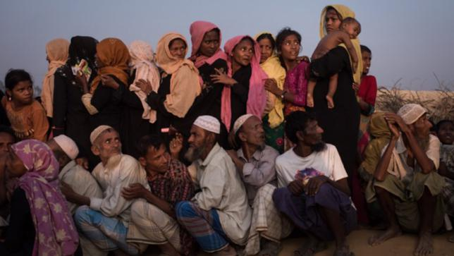 China commits to play positive role in resolving Rohingya crisis