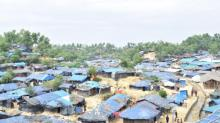 'Rohingyas terrified about repatriation'
