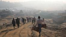 Rohingyas flee camps fearing forcible return to Myanmar