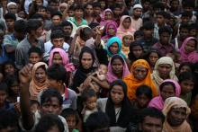 Genocide committed against Rohingyas: Holocaust Museum
