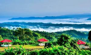 Sajek valley is located in Bangladesh's Rangamati district, is already a famous destination highly reputed as a kingdom in the clouds.The valley is situated 1,800 feet over the sea-level.