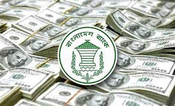 Remittance inflow increases by 12.17pc in 4 months